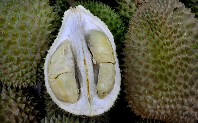 black-pearl-durian